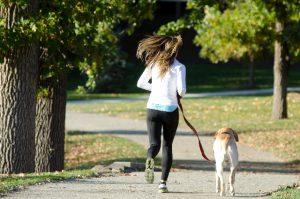 運動不足散歩