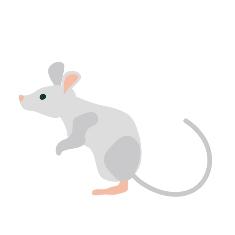 ネズミ害獣